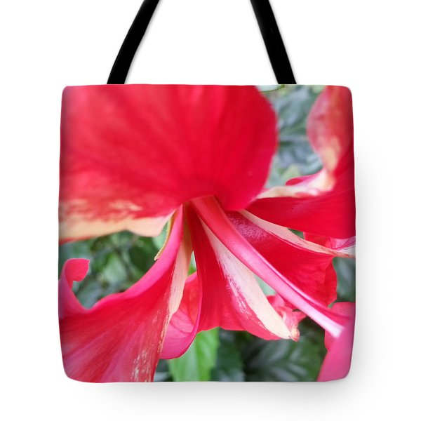 Macro Beauty Tote Bag