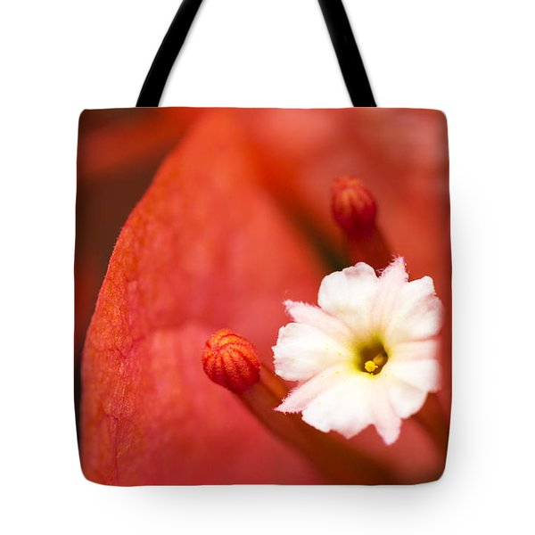 Macro Bougainvillea Bloom 1 Tote Bag