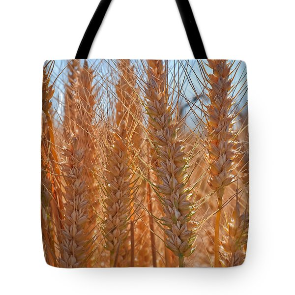 Tote Bag featuring the photograph Macro Of Wheat Art Prints by Valerie Garner