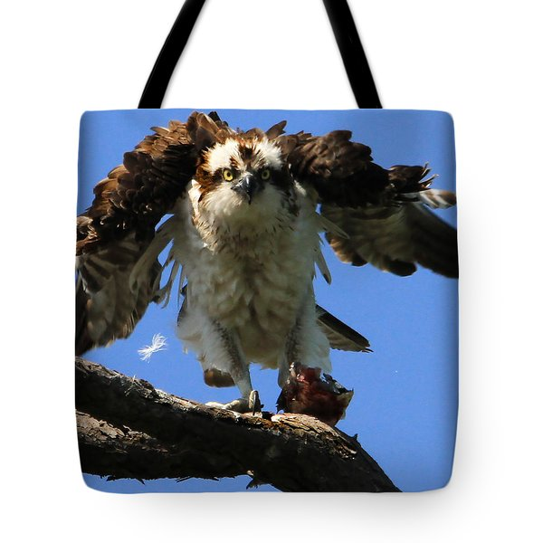 Mad Osprey Tote Bag