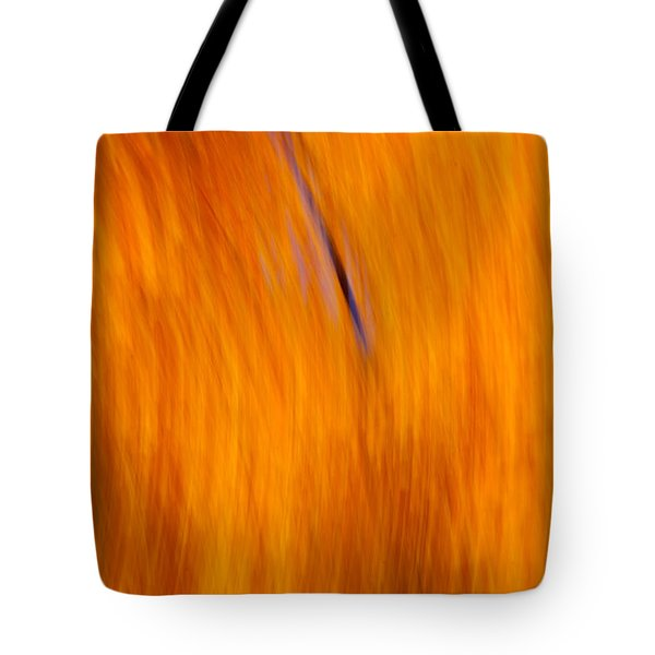 Tote Bag featuring the photograph Maelstrom Of Fall Colors by Jeff Folger