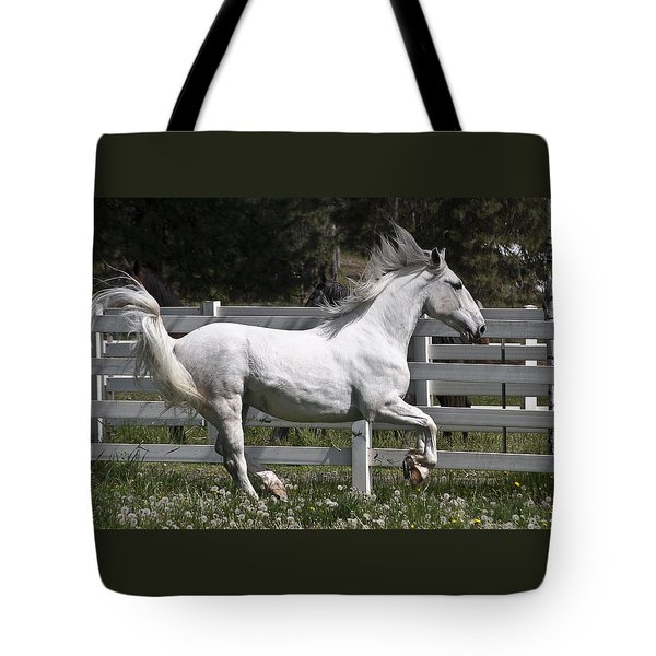 Tote Bag featuring the photograph Maestoso Aurorra D3990 by Wes and Dotty Weber