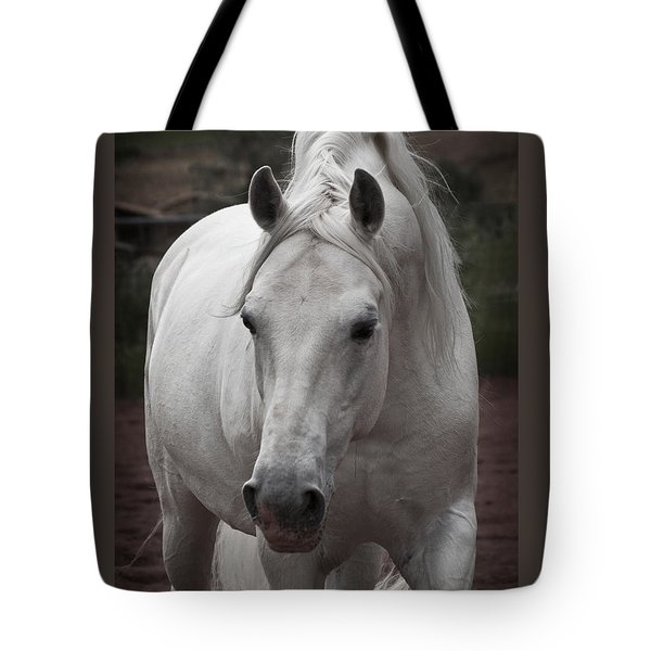 Tote Bag featuring the photograph Maestoso II Ambrosia D5881 by Wes and Dotty Weber