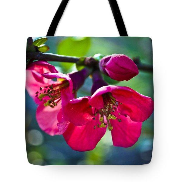 Magenta Blooms Tote Bag