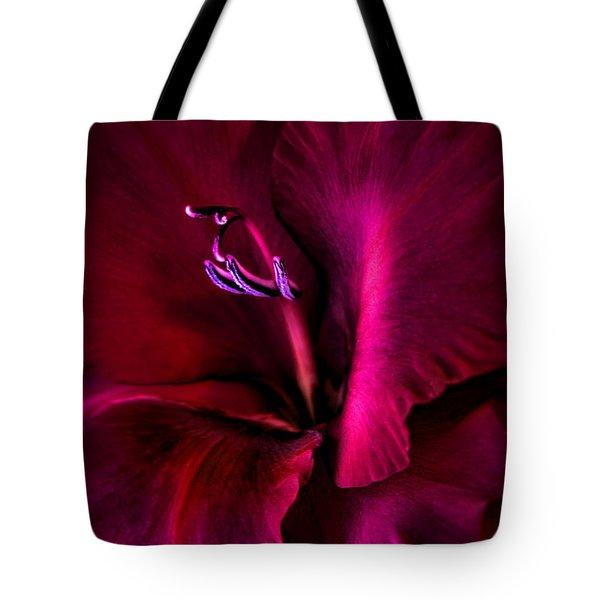 Magenta Gladiola Flower Tote Bag by Jennie Marie Schell