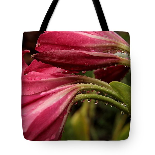 Tote Bag featuring the photograph Magenta Rain by Greg Allore