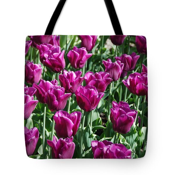 Tote Bag featuring the photograph Magenta Tulips by Allen Beatty