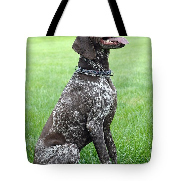 Tote Bag featuring the photograph Maggie by Lisa Phillips