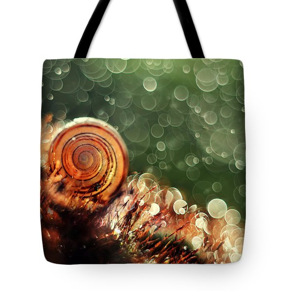 Tote Bag featuring the photograph Magic Forest by Jaroslaw Blaminsky