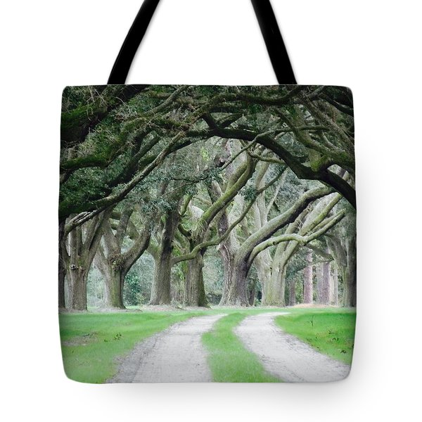 Magic Live Oaks Tote Bag