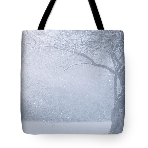 Magic Of The Season Tote Bag