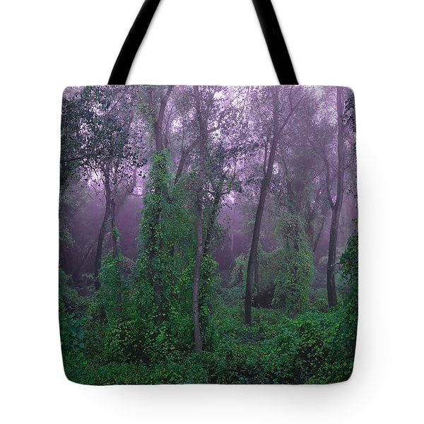 Magical Fairy Forest Tote Bag