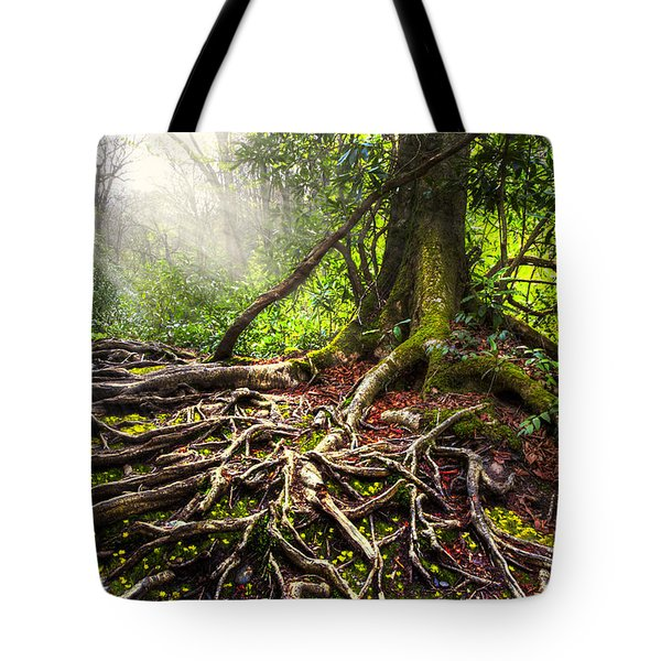Magical Light On The Appalachian Trail Tote Bag by Debra and Dave Vanderlaan