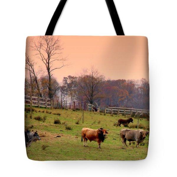 Magical Mornings Tote Bag by Karen Wiles