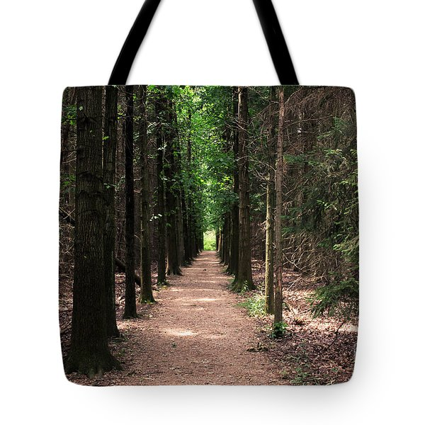 Magical Path Tote Bag by Bruce Patrick Smith