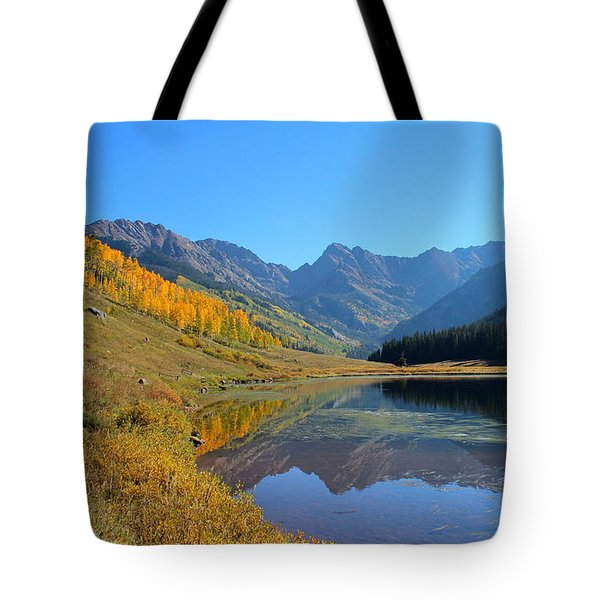 Magical View Tote Bag by Fiona Kennard