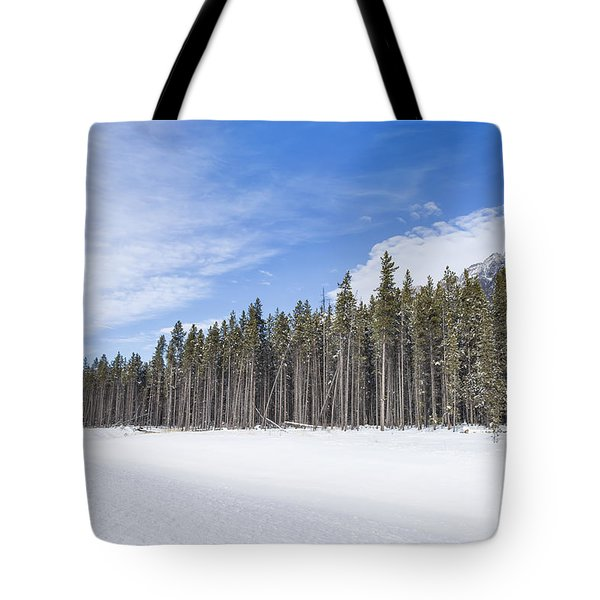 Magnetic North Tote Bag