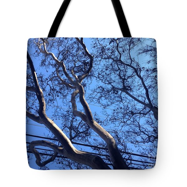 Magnificence Tote Bag by Nora Boghossian