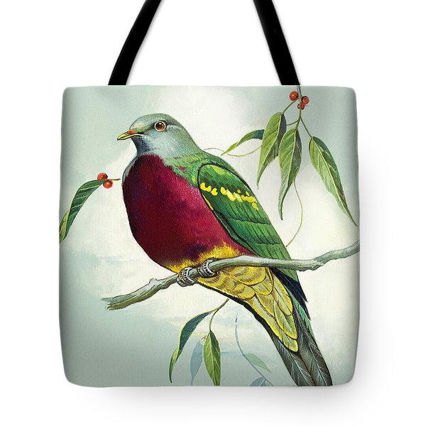 Magnificent Fruit Pigeon Tote Bag by Bert Illoss