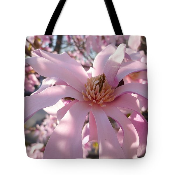 Magnificent Pink Infusion Tote Bag by Lingfai Leung