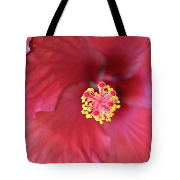 Magnolia 5  Tote Bag
