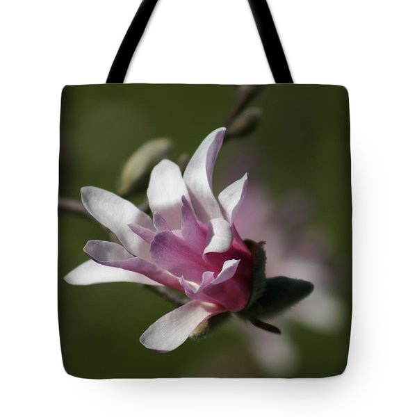 Magnolia Blossom Series 701 Tote Bag