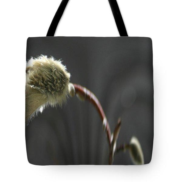 Magnolia Blossom Series 703 Tote Bag