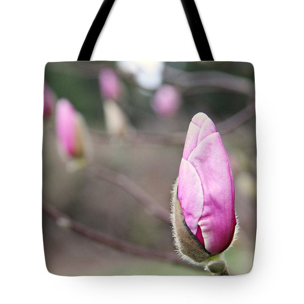 Tote Bag featuring the photograph Magnolia Buds by Katie Wing Vigil