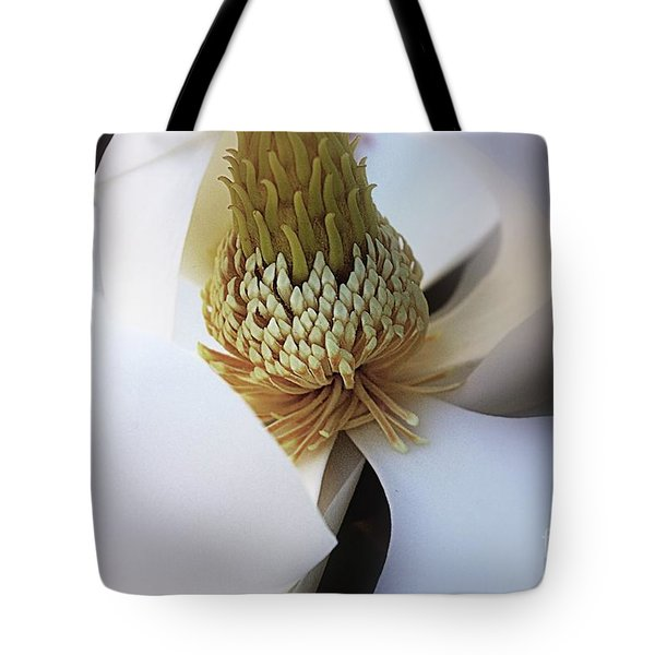 Magnolia Close Up Tote Bag by John S