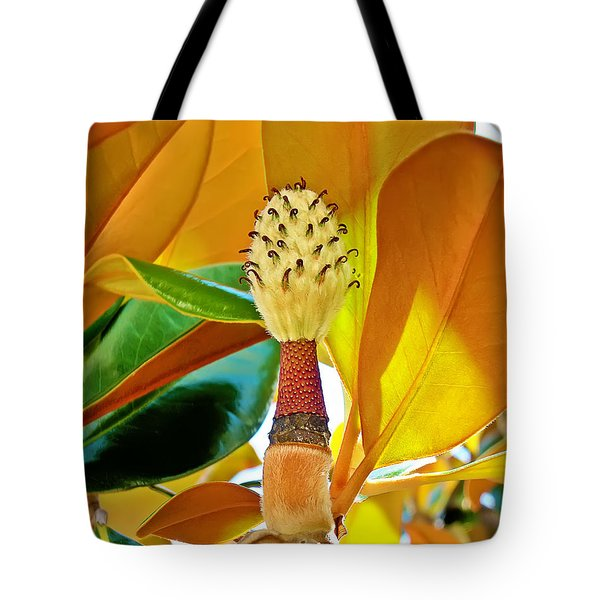 Tote Bag featuring the photograph Magnolia Flower by Olga Hamilton