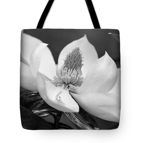 Magnolia In May - Black And White Tote Bag