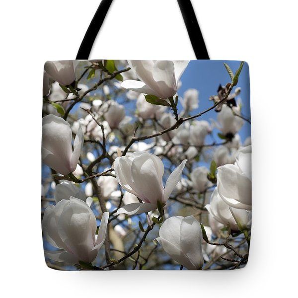 Tote Bag featuring the photograph Magnolia by Lana Enderle
