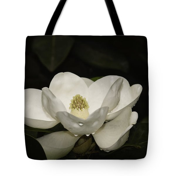 Tote Bag featuring the photograph Magnolia by Penny Lisowski