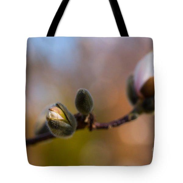 Magnolia Season II Tote Bag by Mary  Smyth