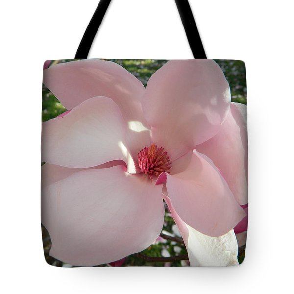 Magnolia Surprise Tote Bag by Emmy Marie Vickers