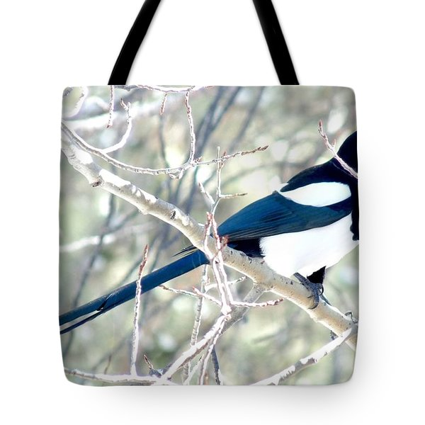 Magpie On Aspen Tree Tote Bag