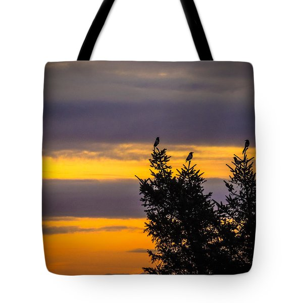 Magpies At Sunrise Tote Bag