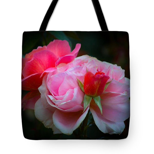 Tote Bag featuring the photograph Maiden Mother Crone by Patricia Babbitt