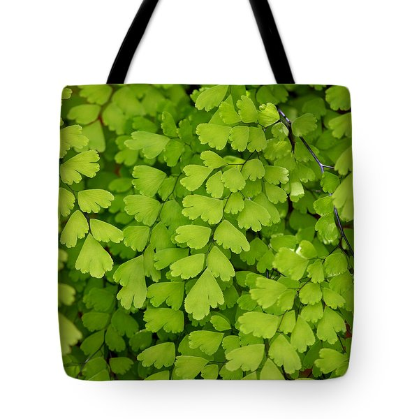 Maidenhair Fern Tote Bag by Art Block Collections