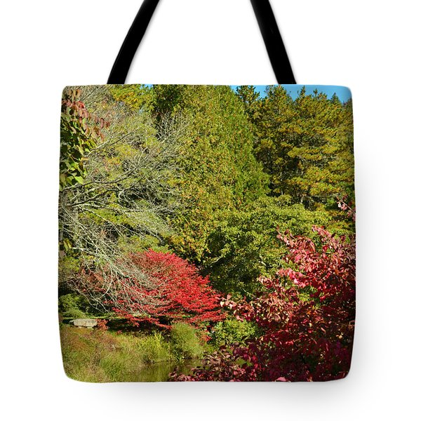 Maine Fall Colors Tote Bag