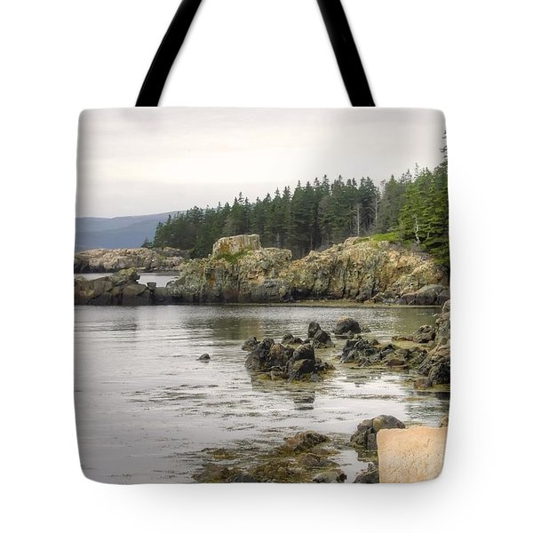 Maine's Beautiful Rocky Shore Tote Bag by Denyse Duhaime