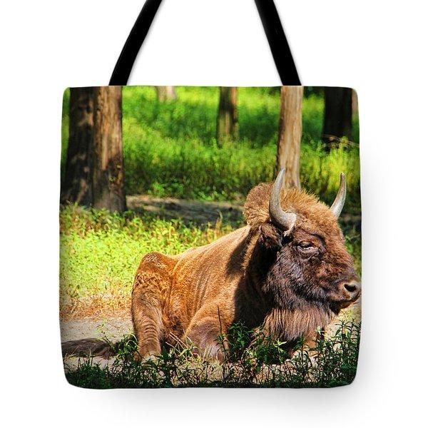 Majestic Bison Tote Bag by Mariola Bitner