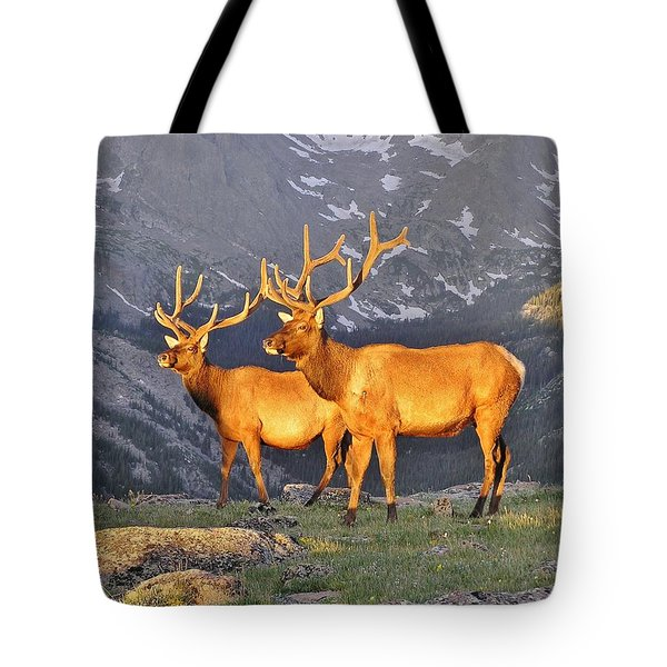 Tote Bag featuring the photograph Majestic Elk by Diane Alexander