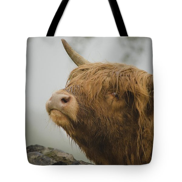 Majestic Highland Cow Tote Bag by Linsey Williams