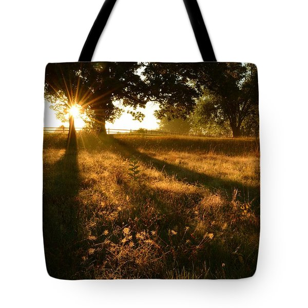 Majestic Oaks Sunrise Tote Bag