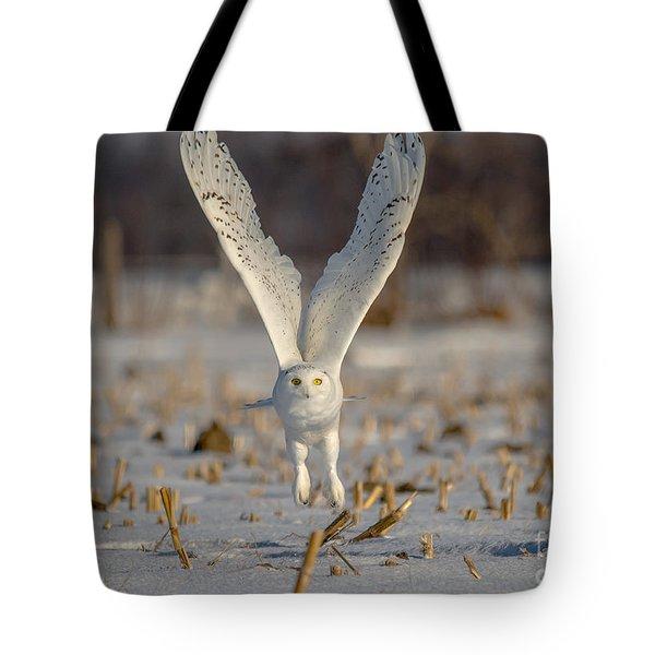 Majestic Snowy Tote Bag