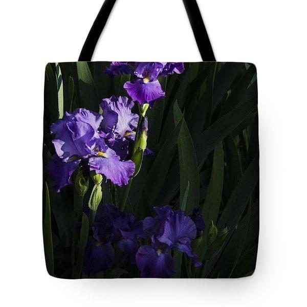 Majestic Spotlight Tote Bag