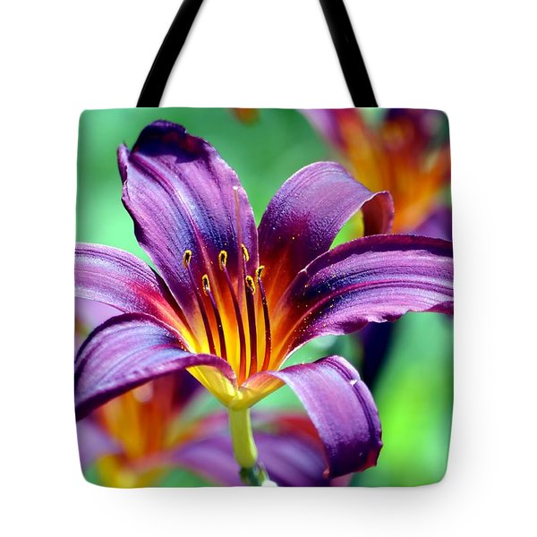 Tote Bag featuring the photograph Majesty by Deena Stoddard