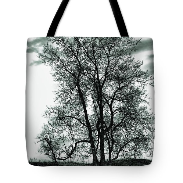 Tote Bag featuring the photograph Majesty by Lauren Radke