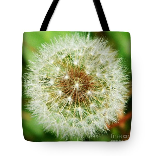 Make A Wish Tote Bag by Andrea Anderegg